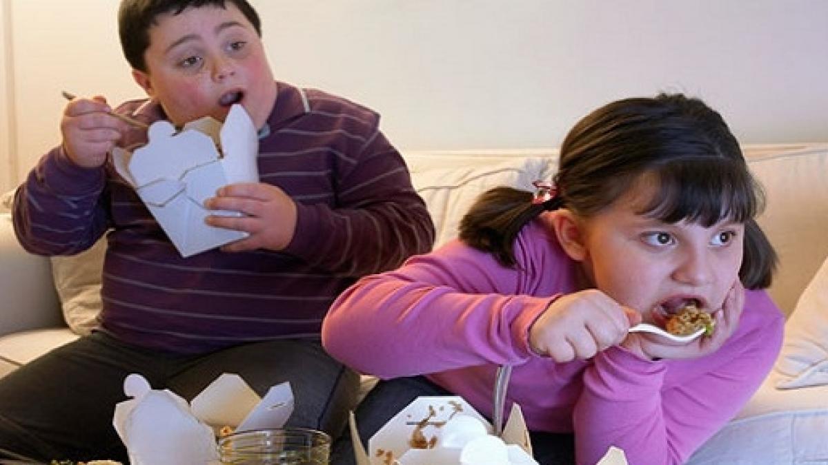 Kesan Obesiti Terhadap Otak Anak-ANak